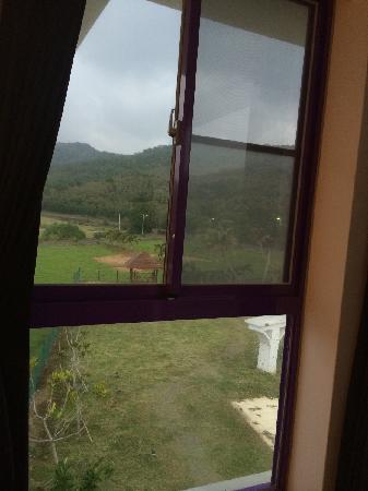 Dufa Luxury Manor Kenting : 从房间的窗子里望出去是大片的绿色