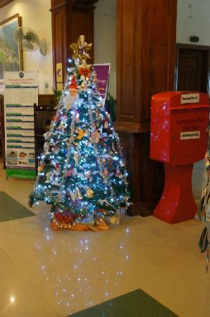MotherHome Guesthouse: 圣诞树和邮筒