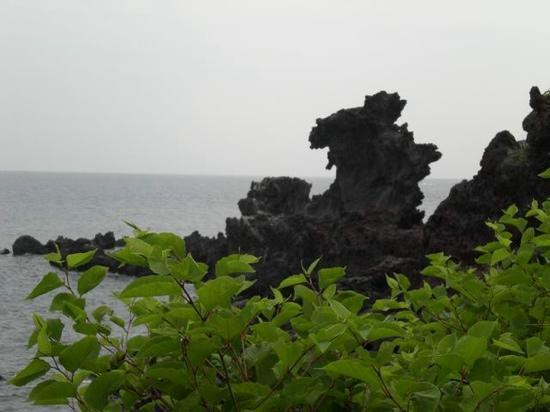 Dragon Head Rock (Yongdu-am): 龙头岩