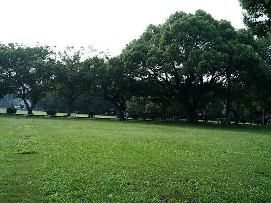 Sun Yat-sen University : 美丽