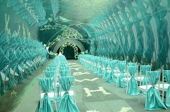 Aqua Tunnel Weeding Picture Of Intercontinental Sanya