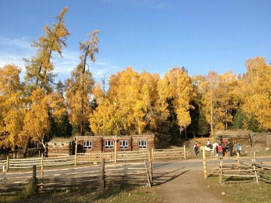 Baihaba Forest Park: 秋天美