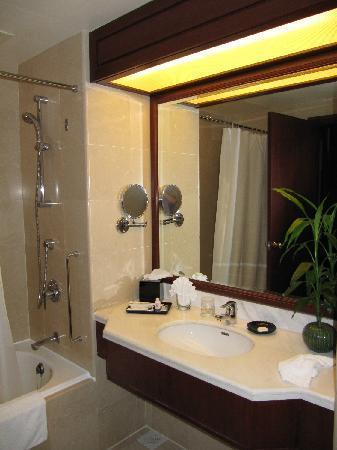 Evergreen Laurel Hotel : 浴室