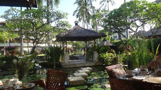Nusa Dua Beach Hotel & Spa: 园景