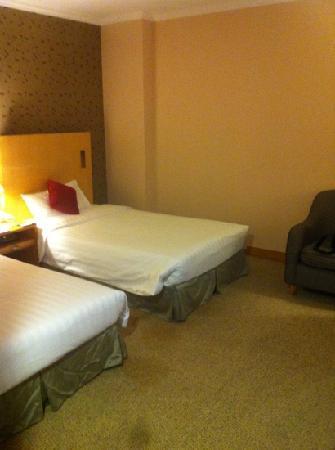 Novotel Xinqiao Beijing: 房间无窗,其余基本满意,出乎意料的是酒店水龙头热水是温泉水,不是烧的热水