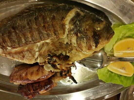 Luka Sarajevo: Grilled fish and squids