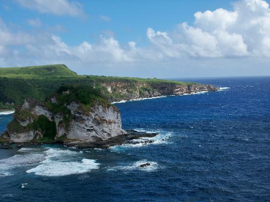 Bird Island : 鸟岛