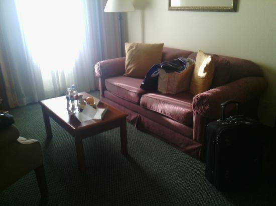 Staybridge Suites Silicon Valley-Milpitas: 客厅沙发