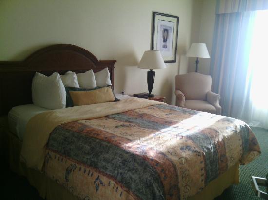 Staybridge Suites Silicon Valley-Milpitas : 卧室