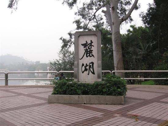 Luhu Park : 麓湖公园