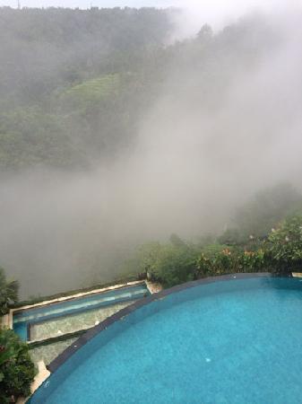 Rijasa Agung  - Bali Ubud Luxury Hotel Resort Villa : 山谷泳池