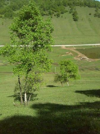 Guanshan Pasture: 很漂亮