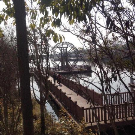 Xi'an Qujiangchi Site Park : 很安静
