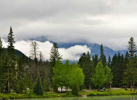 Banff Centre for Arts and Creativity: nature