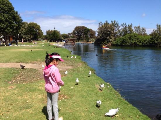 Parque infantil del Lago Pertobe: 快乐周末时光