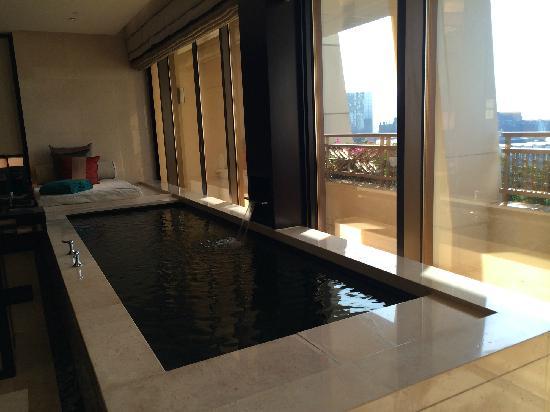 Banyan Tree Macau : 套房泳池