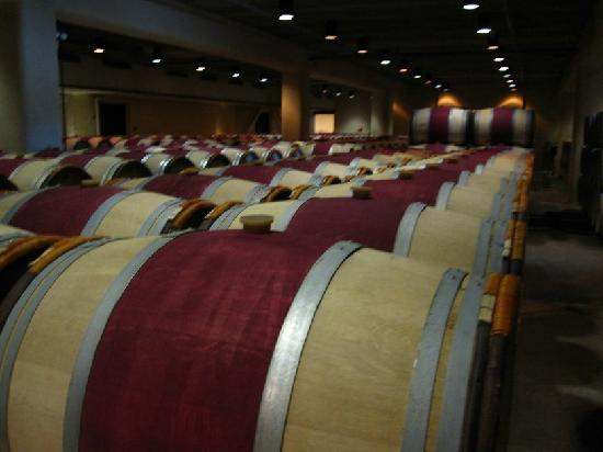 Robert Mondavi Winery: 酒窖