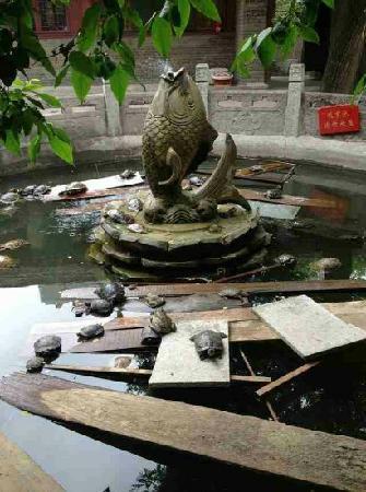 Qing Long Si: 寺庙一角
