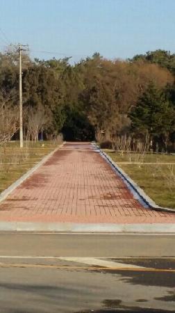 Longyinquan Forest Park