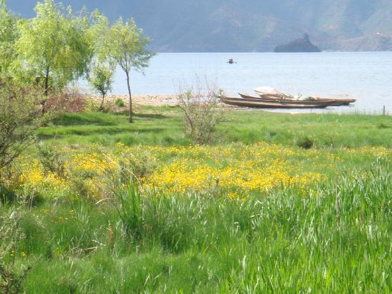 Ruoergai Wetland Reserve : 1