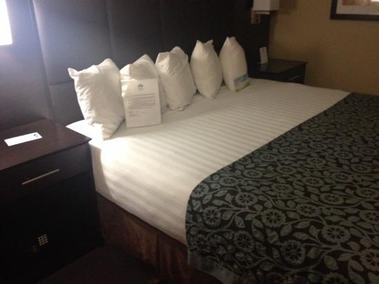 Days Inn Williams: 大床上居然有四个枕头,要睡四个人吗