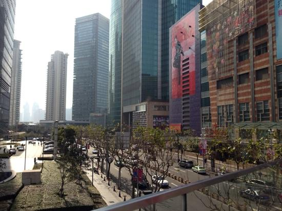 Pudong New Area: 浦东