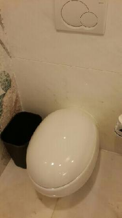 InterContinental Hotel Dalian: 马桶很有特点