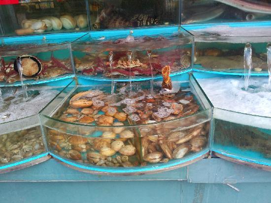 Spring Garden Seafood Plaza: 1