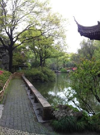 Humble Administrator's Garden: 漂亮