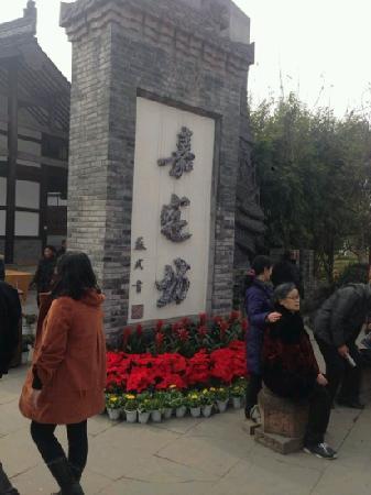 Jiading Fang: 乐山