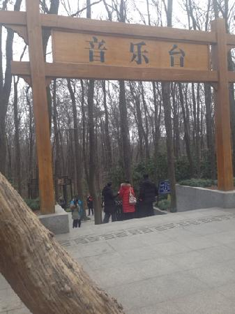 Zhongshanling Bandstand: 音乐台门口(北门)