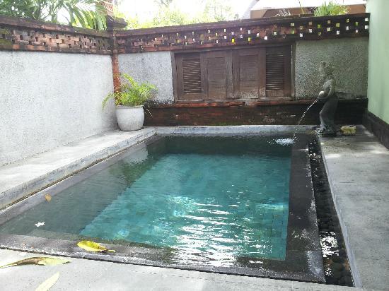 Rama Beach Resort and Villas : 院子里的小泳池/小水坑
