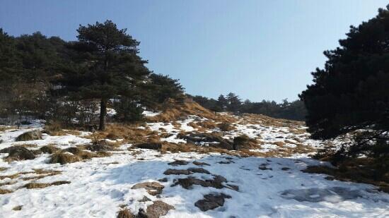 Huangshan Geopark: 黄山后山