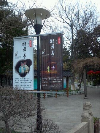 Tinglin Park: 亭林公园入口