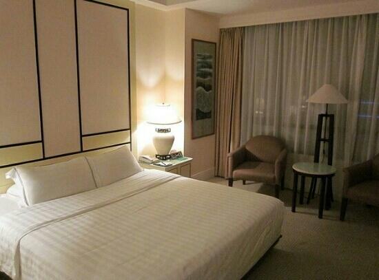Hainan Junhua Haiyi Hotel : 豪华大床房