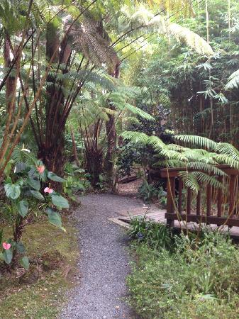 Volcano Village Lodge: good lodge
