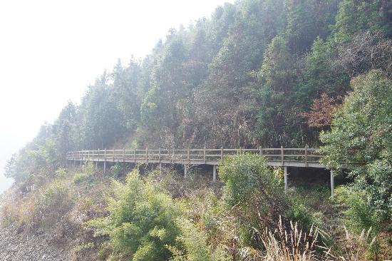 Hangzhou Qiandaohu National Forest Park: 2