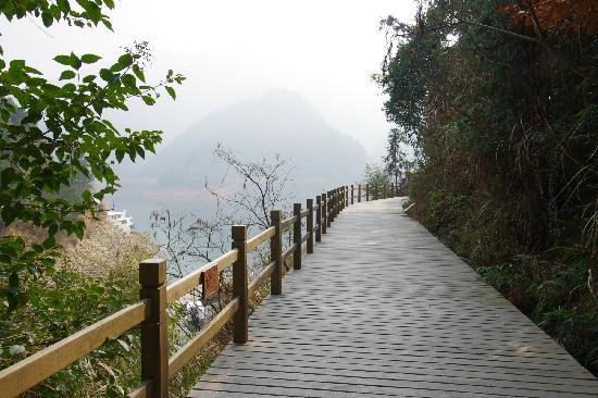 Hangzhou Qiandaohu National Forest Park: 1
