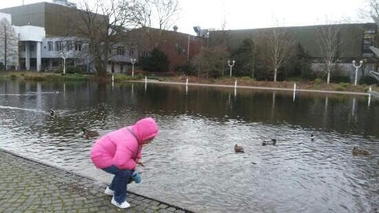 Grugapark Essen: Gruga park 小动物的天堂