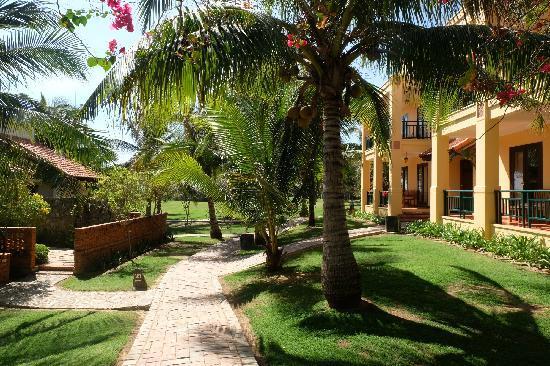 Pandanus Resort: 椰树和客房