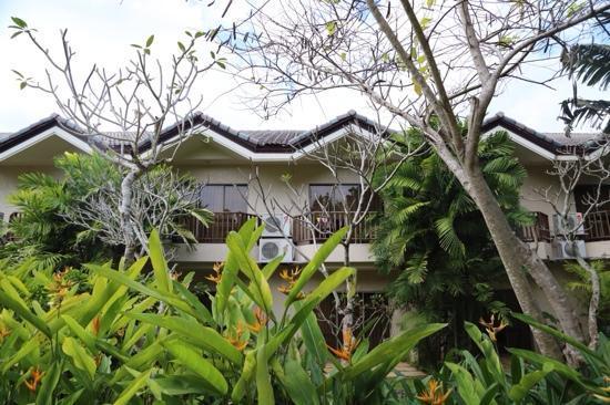 Amorita Resort : 房间外观