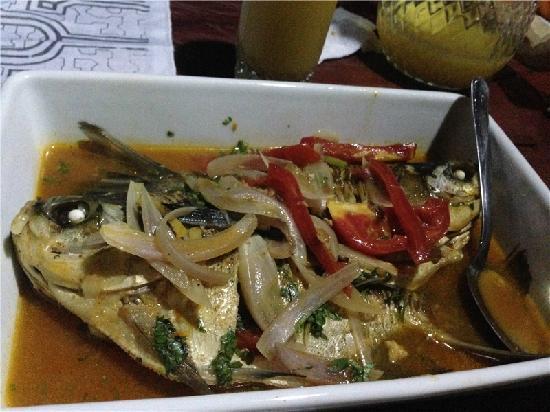 MarinAmazonica: dellicious fish