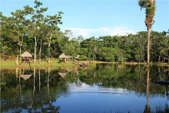 MarinAmazonica : lake