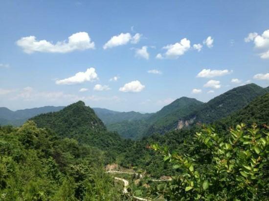 Yanuo Tropical Rain Forest Resort : 太美了