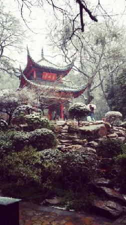 Aiwan Pavilion : 漂亮