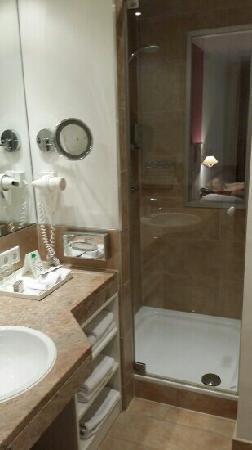 Hotel Goliath am Dom : shower