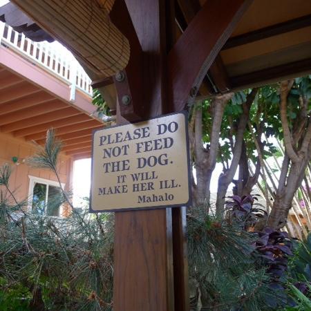 Maui Garden Oasis: 提示