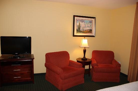 TownePlace Suites Pocatello : 沙发