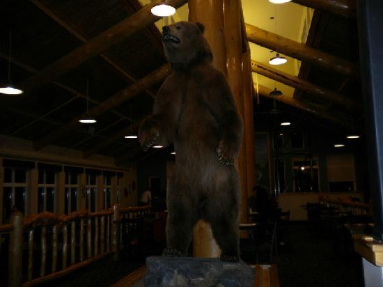 Grande Denali Lodge: 6