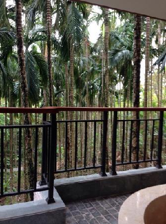 NARADA Resort & Spa Qixian Mount: 阳台外的槟榔树